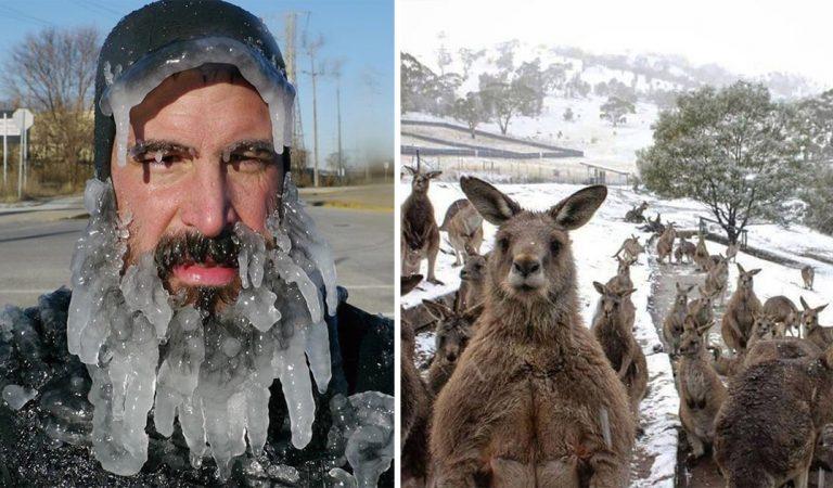 15 photos de l'hiver à travers le monde