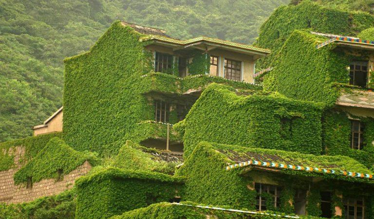Chine : Quand Dame Nature reprend ses droits dans un village abandonné
