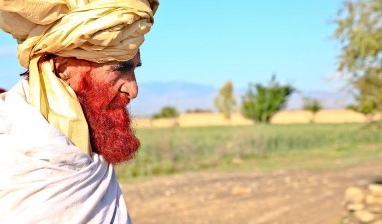 Pourquoi autant d'hommes ont-ils une barbe rousse sans être roux ?