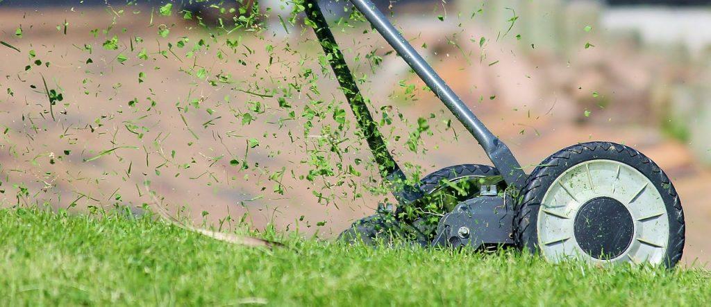 tondre le gazon pour enlever mauvaise herbe