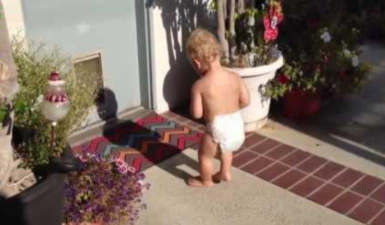 Ces enfants découvrent leur ombre pour la première fois et c'est vraiment mignon