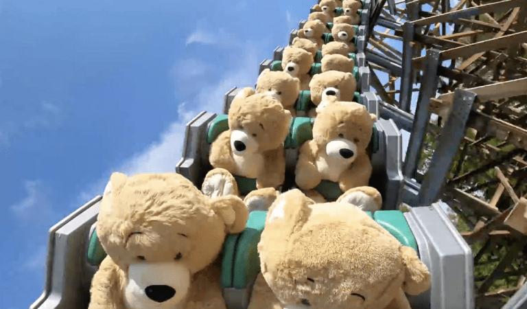 Le parc d'attractions Walibi Holland fait tester sa nouvelle attraction avec des ours en peluche