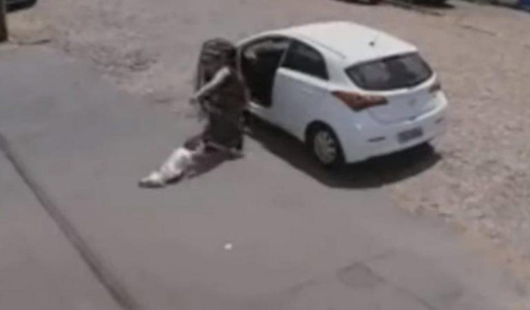 Vidéo-choc : elle se débarrasse de son chien à trois pattes en le balançant hors de sa voiture