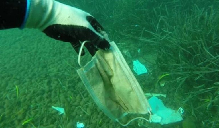 Covid-19 : les masques et gants jetés dans les grands fleuves européens polluent massivement les océans