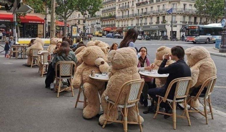 Covid-19 : ce café parisien utilise des ours en peluche géants pour respecter la distanciation physique