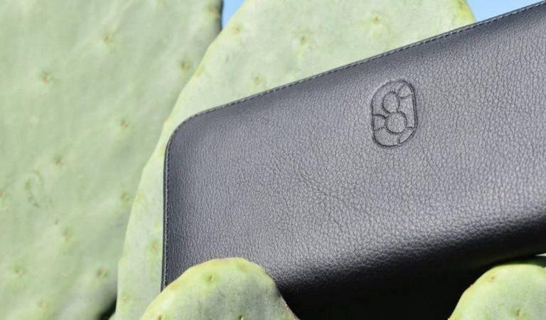 Deux entrepreneurs mexicains créent du cuir vegan à partir de cactus