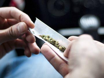 Un conducteur fumant du cannabis au volant.