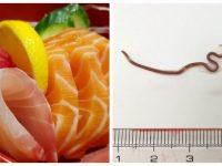 Des sushis et un ver.