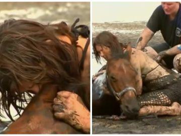 Nicole Graham avec son cheval Astro, pris dans les sables mouvants en Australie.