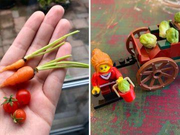 insolite récolte fruits légumes miniatures