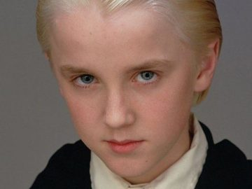 Tom Felton, dans Harry Potter.