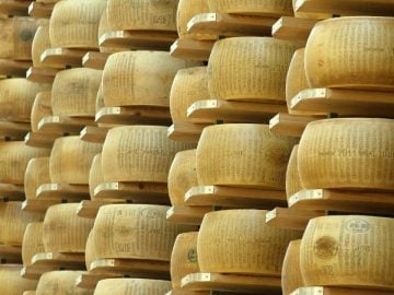 Cave de parmesan dans un entrepôt