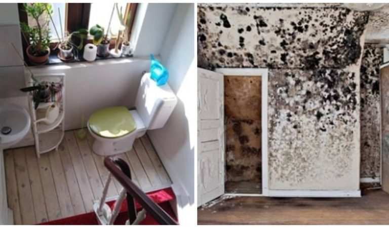 Des agents immobiliers partagent les photos des pires maisons visitées