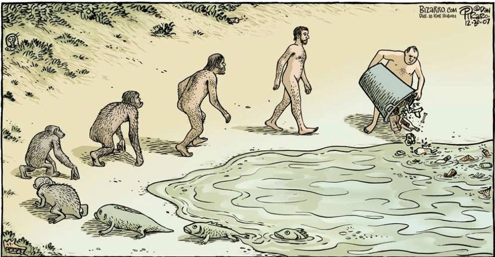évolution de l'humanité
