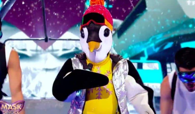 Mask Singer : Une star des années 1990 sous le costume du Manchot, remporte la grande finale