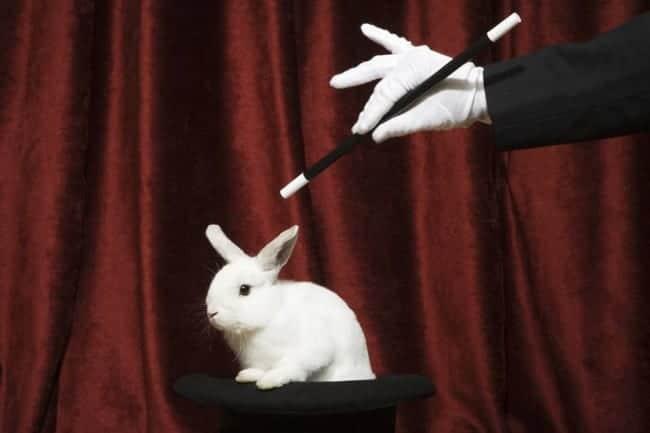 secrets tours de magie lapin sorti du chapeau