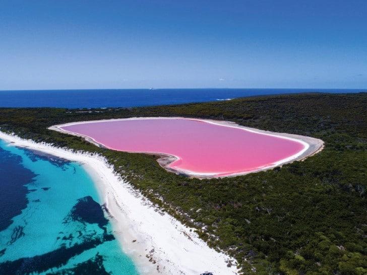 australie photos incroyables entre beauté et bêtes