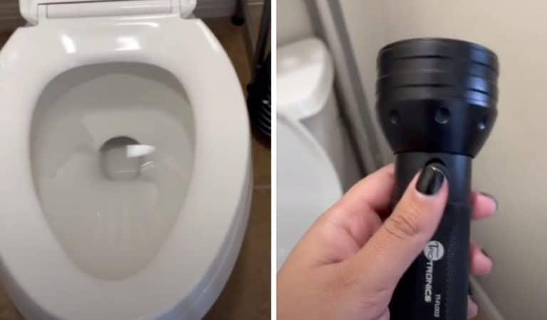 Vos toilettes sont-elles vraiment propres ? «La reine du ménage» prouve qu'aucune salle de bain n'est propre