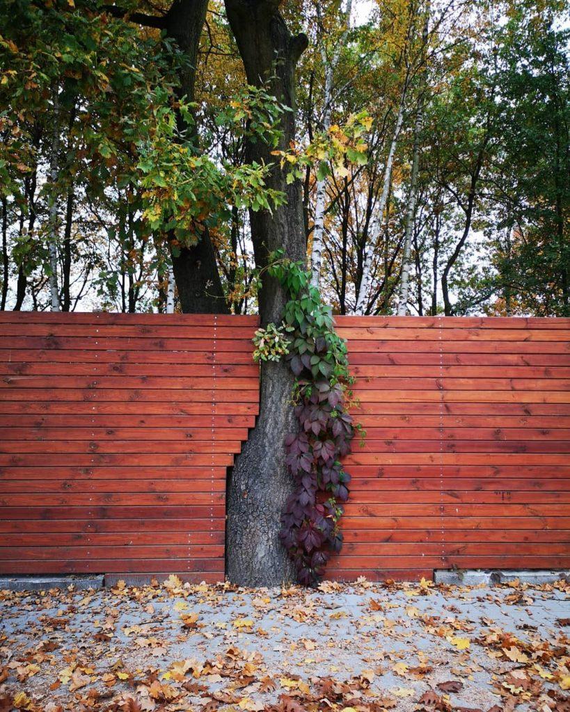 Une architecture respectueuse de l'environnement