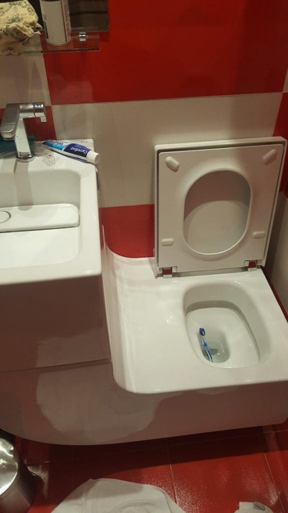 Faire tomber sa brosse à dents dans les toilettes