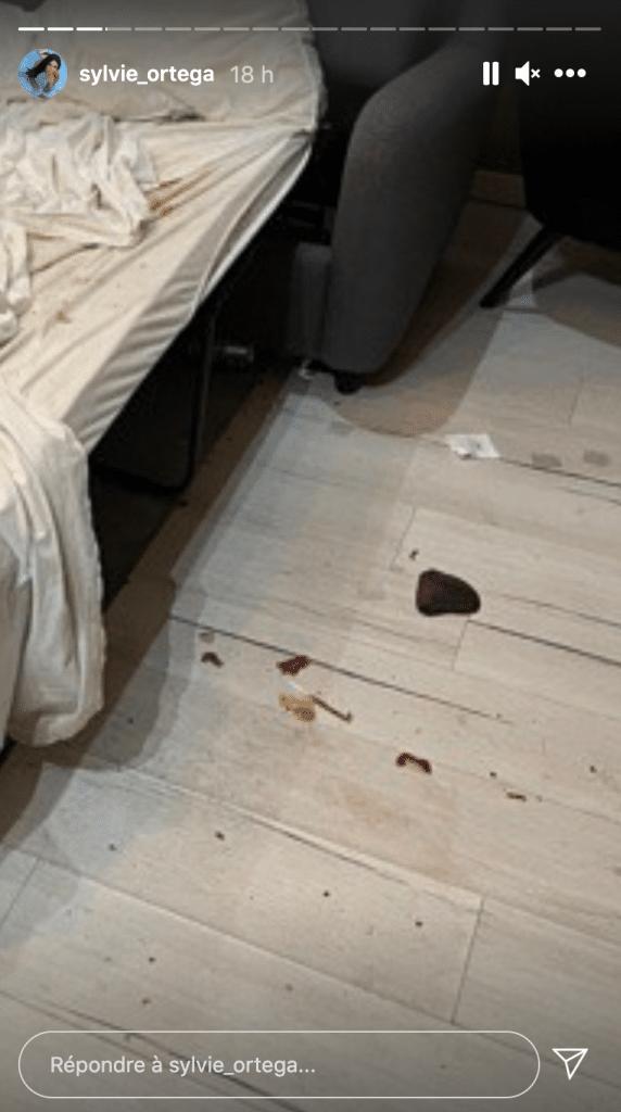 Appartement airbnb loué par loana