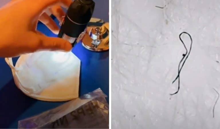 Des vers microscopiques retrouvés dans les masques : info ou intox ?