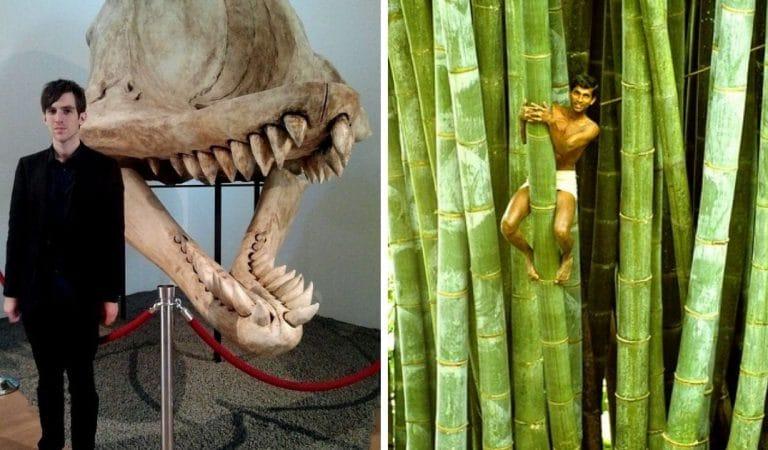 19 photos de comparaisons qui relativisent la taille de l'homme
