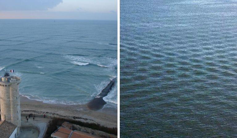 Les vagues carrées : un phénomène maritime hypnotisant qui n'est pas sans danger