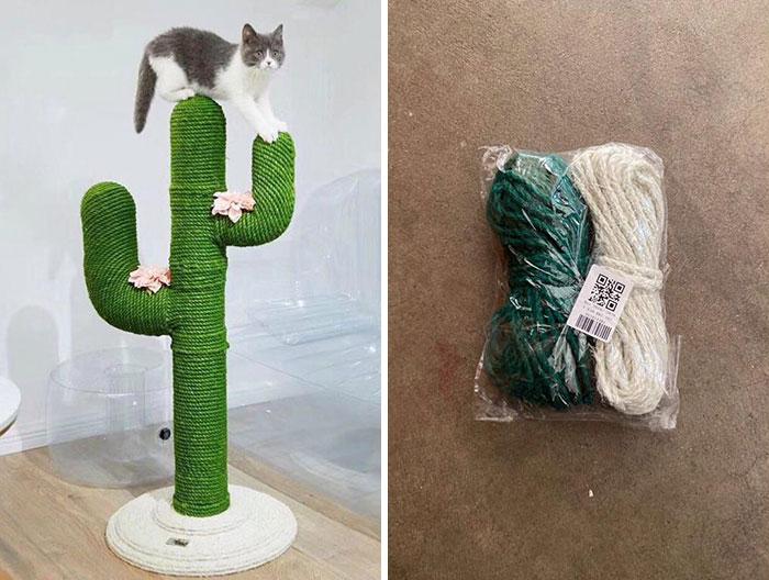 Un achat trompeur sur internet : un arbre à chat