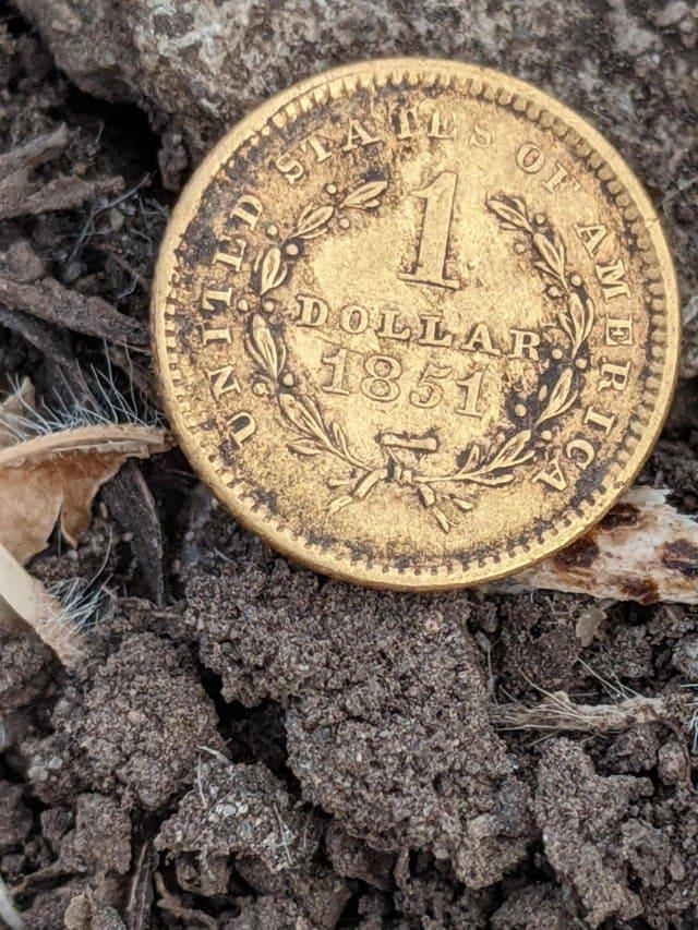 Vieux dollars trouvés avec un détecteur de métaux