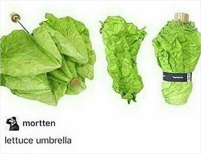 Une invention stupide : un parapluie en forme de laitue