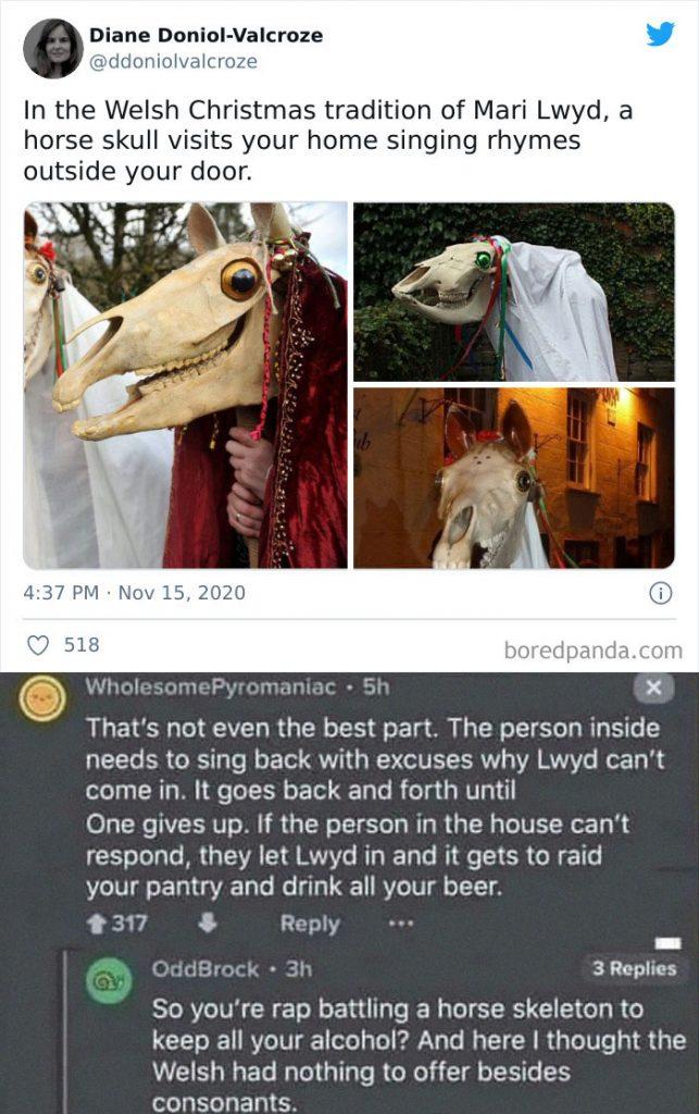 un crâne de cheval