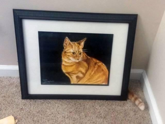 une coïncidence avec un chat