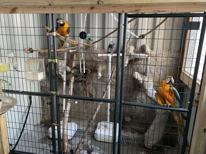 une cage à oiseaux