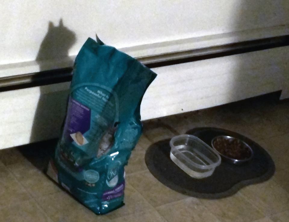 un paquet de nourriture pour chat