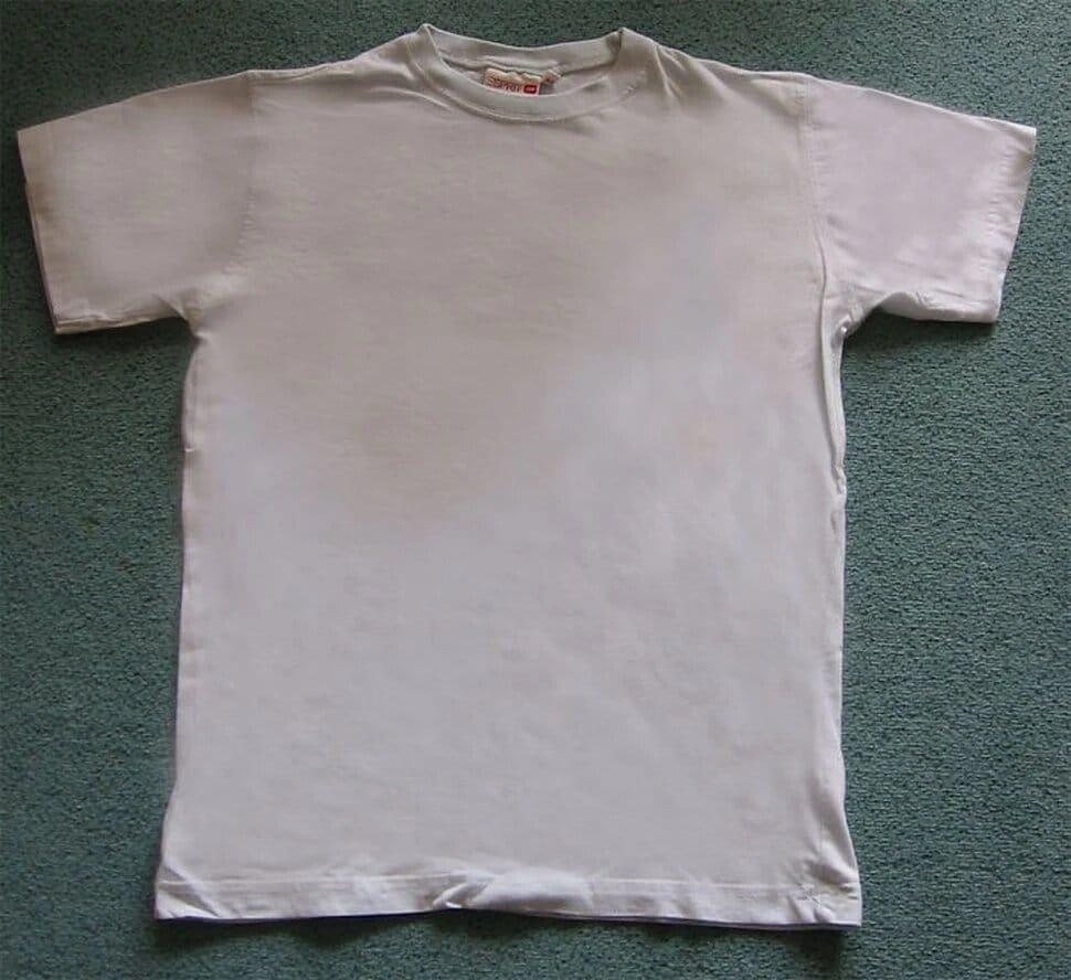 un t-shirt en coton