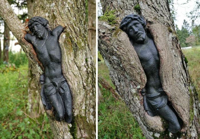 une statue de Jésus dans un arbre