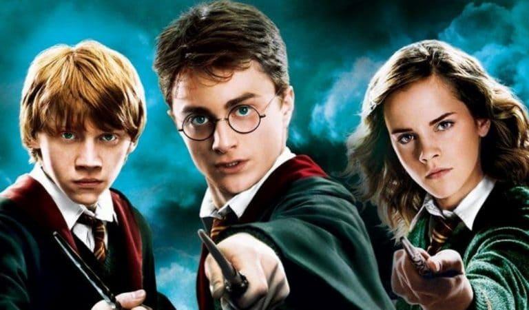 Harry Potter : avec qui les acteurs partagent-ils leur vie ?