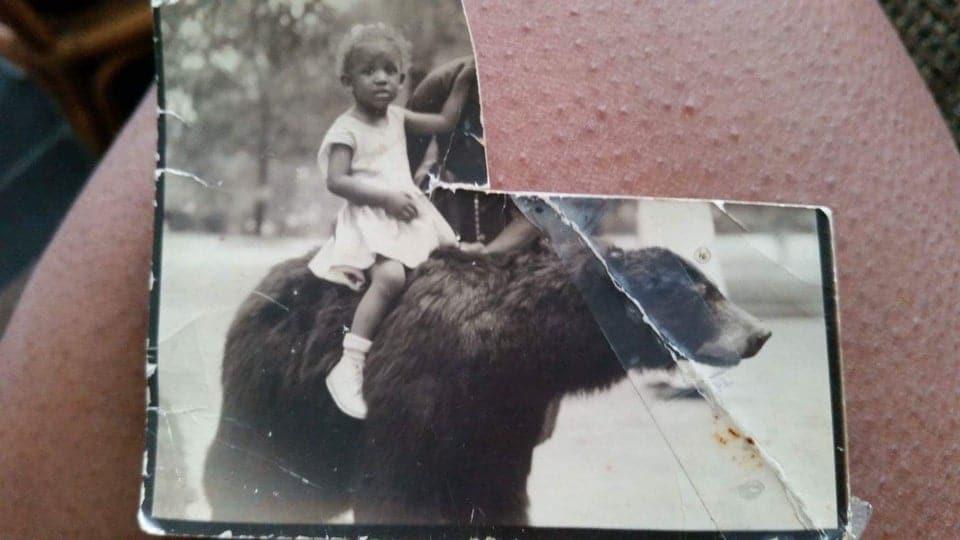 une fillette sur un ours