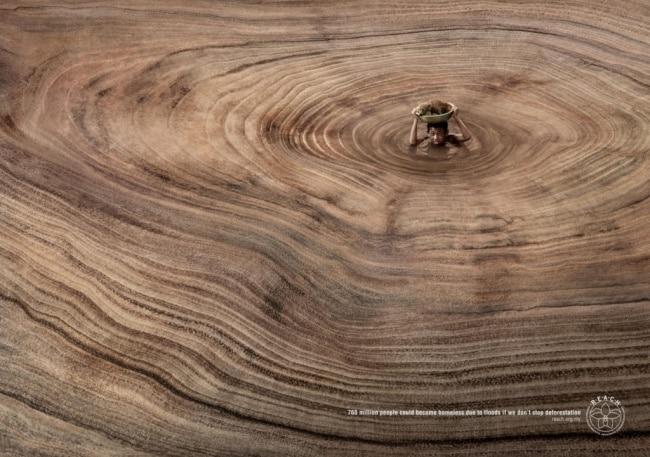 une campagne publicitaire contre la déforestation