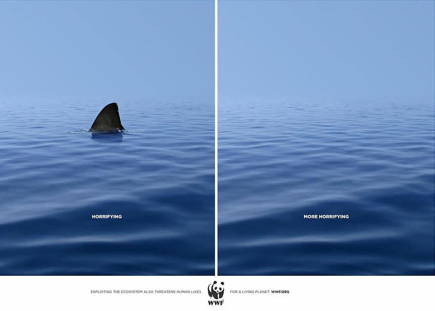 une annonce WWF