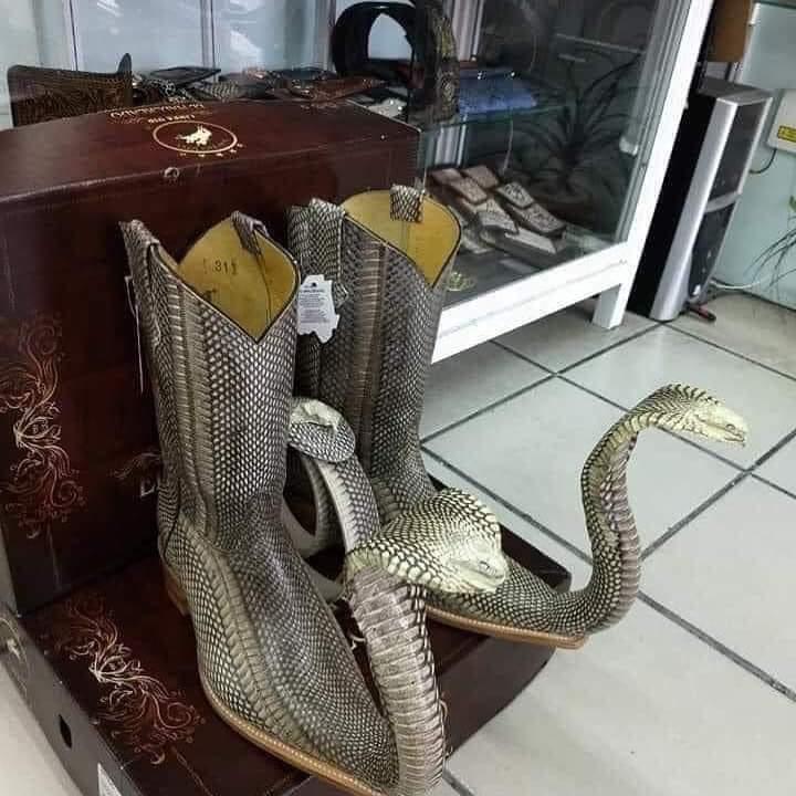 Bottes à motif de serpent