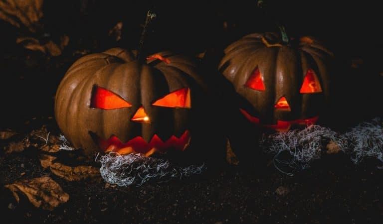 20 idées originales pour sa décoration d'Halloween en 2021